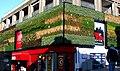Wilkinsons grass covered store Sutton surrey 26-01-12..jpg