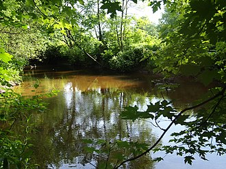 Wood Creek - Looking upstream in June. Until 1820, canoes, batteaux, and 60-foot Durham boats would have passed many times each day.