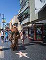 Wookie (24844837463).jpg