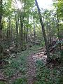 Wooster Mountain State Park.jpg