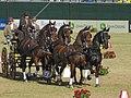 World Equestrian Games Driving 07.jpg