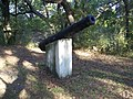 Yellow Bluff Fort SP cannon01.jpg