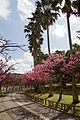 Yogi Park Naha Okinawa Japan02s5.jpg