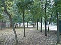 Zadniaproŭje № 3, Mahilioŭ, Belarus - panoramio (36).jpg
