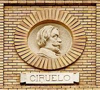 Zaragoza - Antigua Facultad de Medicina - Medallón - Ciruelo.jpg