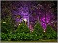 """BCE Place, Mixed Lighting"" (3985002169).jpg"