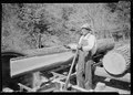 """Curtis Stiner operating circular saw at the Norris Dam site."" - NARA - 532661.tif"