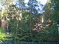 (PL) Polska - Warmia - Zamek Kapituły Warmińskiej w Olsztynie - Warmia Chapter Castle in Olsztyn (1.VII.2005) - panoramio.jpg