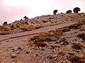 Κοντά στο καταφύγιο Δέφνερ - panoramio (2).jpg