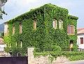 Πέτρινο σπίτι ντυμένο με αμπέλοψη, 8 χλμ πριν την Καλαμάτα - panoramio.jpg