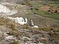 Білокузминівка. Панорама зі скелеподібного оголення верхньої крейди 2..jpg