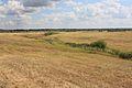 Вид с возвышенности - panoramio (2).jpg