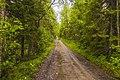 Дорога на Голгофу MG 1271.jpg