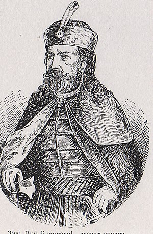 Vuk Grgurević - Vuk Branković the Dragon, Serbian Despot