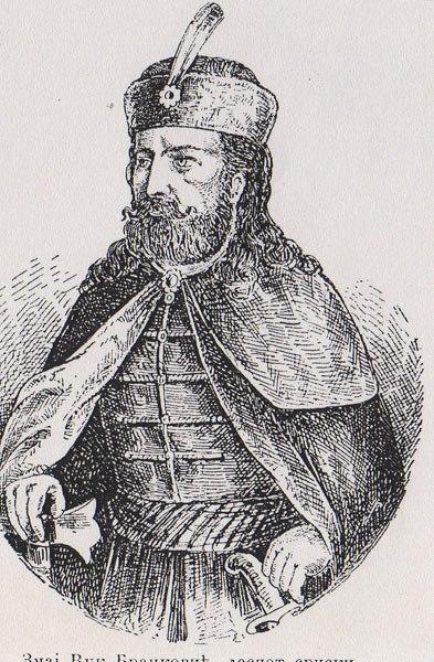 Змај Вук Бранковић, деспот српски