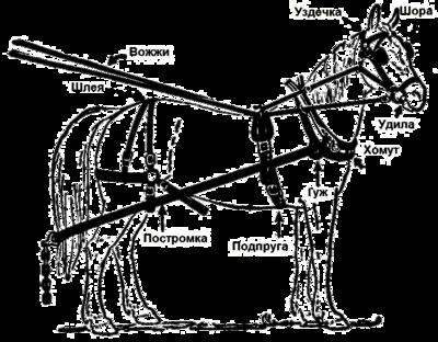 Сбруя — Википедия