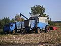 Кукурузный комбайн.jpg