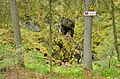 Оленьи ручьи - panoramio (4).jpg