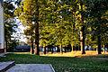 Парк, смт Клевань, 2.jpg