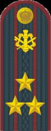 Полковник ФСИН.png