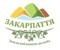 Туристичний бренд Закарпаття.png
