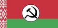 Флаг белорусских национал-большевиков.png