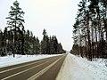 Шоссе Р86 зимой - panoramio.jpg