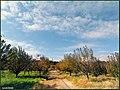 مناظر پاییزی از روستای میمونق - panoramio.jpg