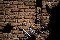 کاروانسرای دیر گچین یا مادر، بزرگترین کاروانسرای خشتی گچی ایران در مرکز پارک ملی کویر- استان قم 50.jpg