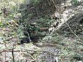 おきなの滝 - panoramio.jpg