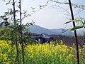 婺源映像(Wuyuan)-25 - panoramio.jpg