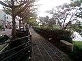 安南嘉南大圳旁的環圳步道.jpg