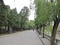 少林寺景区的道路 - panoramio.jpg