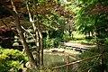 東高根森林公園 - panoramio (33).jpg