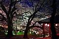 烏帽子山公園 Eboshi-yama Park - panoramio.jpg