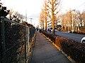 道路沿い - panoramio.jpg