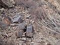 阿勒泰北山羊站在石刻上 余华峰 - panoramio.jpg