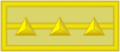 10陆军上尉.png