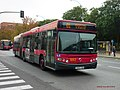 1082 Tussam - Flickr - antoniovera1.jpg