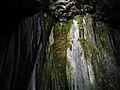 115 Cova de Sant Miquel del Fai, paret calcària revestida de molses.JPG