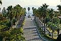 141115 Hyogo prefectural Ako Seaside Park Japan08s3.jpg