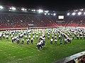 15. sokolský slet na stadionu Eden v roce 2012 (42).JPG