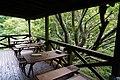 170811 Rokko Alpine Botanical Garden Kobe Japan25n.jpg