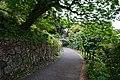 190429Kochi Prefectural Makino Botanical Garden06s5.jpg