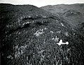 1952. Cessna 170-B survey plane mapping Douglas-fir beetle damage near Sutherlin, OR. (33456764176).jpg