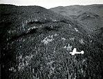 1952. Cessna 170-B survey plane mapping Douglas-fir beetle damage near Sutherlin, OR. (33456764176).jpg