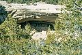 1982-06-07-Mesa Verde-a 28-ps.jpg