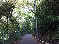 1 Chome Jindaiji Minamimachi, Chōfu-shi, Tōkyō-to 182-0013, Japan - panoramio (5).jpg