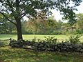 2007 Carlisle stone wall Massachusetts 1520579862.jpg