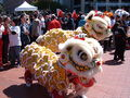 2008 Olympic Torch Relay in SF - Lion dance 33.JPG